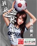 足球之娱乐巨星 作者:就叫小新