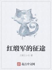红缎军的征途 作者:兰陵王小生