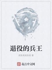 游姿小说网 退役的兵王