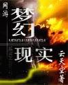 网游-梦幻现实 作者:云天空