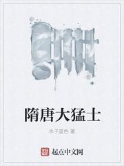 隋唐大猛士 作者:木子蓝色