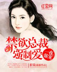 《一夜强宠:禁欲总裁强制爱》 作者:素锦