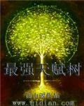 游姿小说网 最强天赋树