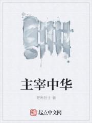 主宰中华 作者:楚南狂士